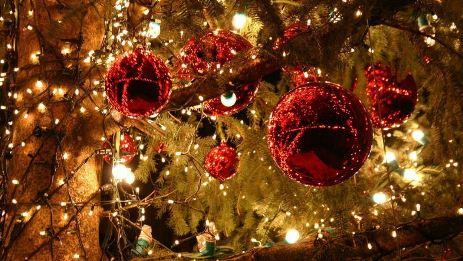 новогодняя елка может исполнить желания